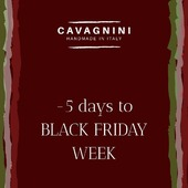 - 5 Days to BLACK FRIDAY WEEK! Prepare your cart, all items on our website will be 50% off 🎊  #handmade #madeinitaly🇮🇹 #walkingcane #walkingsticks