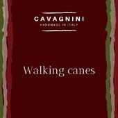 What's your favourite walking stick? #handmade #madeinitaly🇮🇹 #cavagnini #walkingcane #gentleman